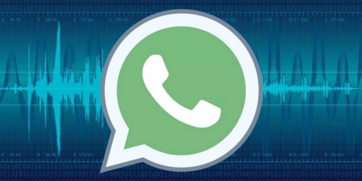 ¿Cómo mandar audios en WhatsApp? La tierna guía para una abuela