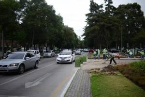 trabajos en Plaza España
