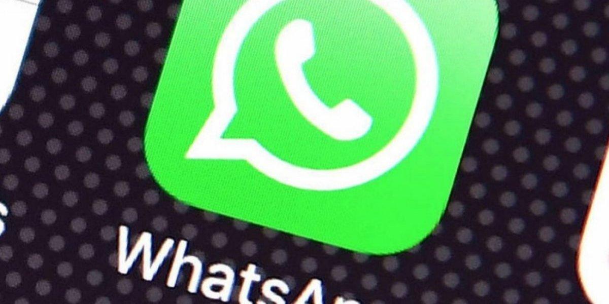 Senador invocará inmunidad parlamentaria en caso Whatsapp CEE