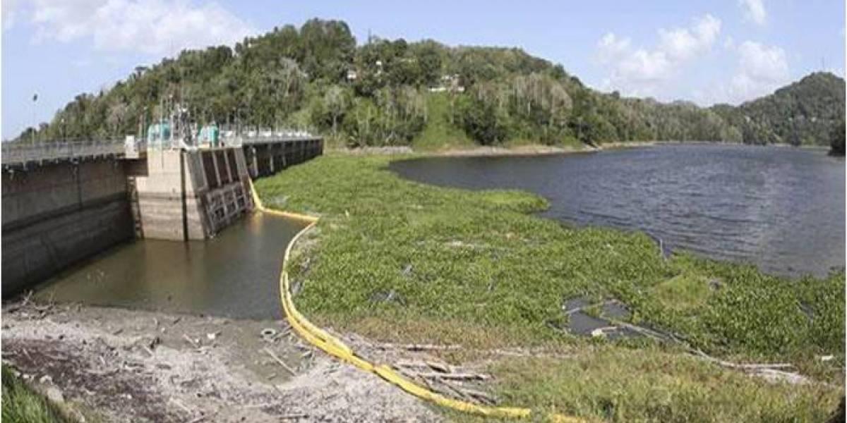 """""""El Niño"""" no es responsable de provocar sequías en la Isla, según estudio"""
