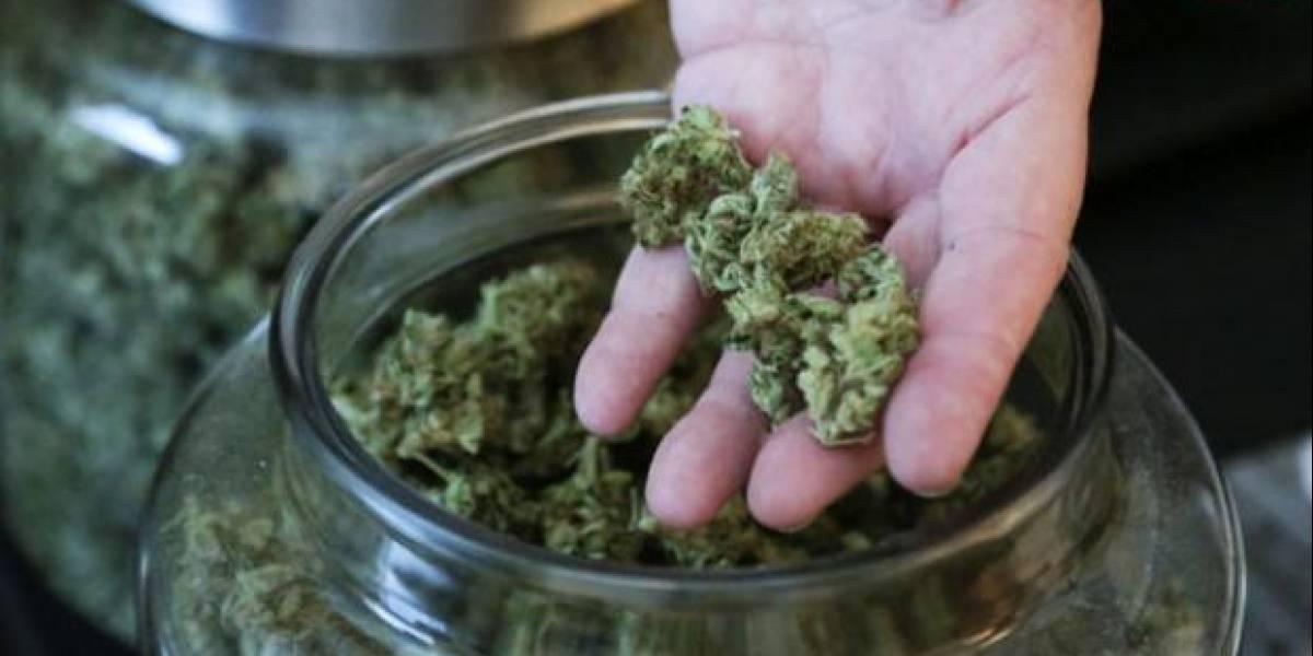 San Fernando innova en Consulta Comunal y pregunta sobre el uso de la cannabis