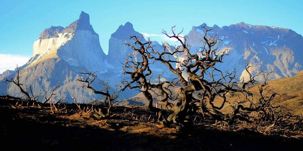 Entradas a Parques Nacionales se comprarán a través de plataforma online