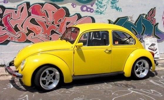 beetle558x341.jpg