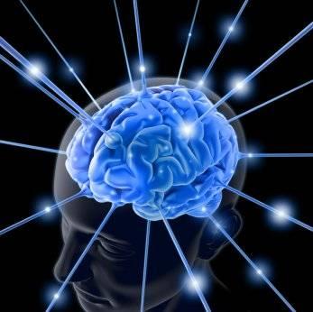 brain7639821.jpg