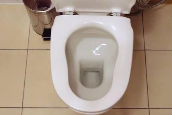 taza del baño, inodoro