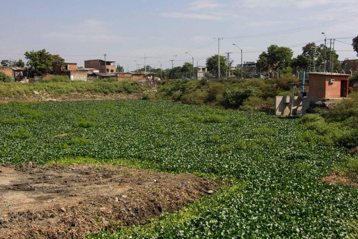 En el 2017, las lagunas de regulación quedaron recuperadas en un 50% luego de haber tenido asentamientos humanos ilegales a su alrededor. Foto: Hroy Chávez