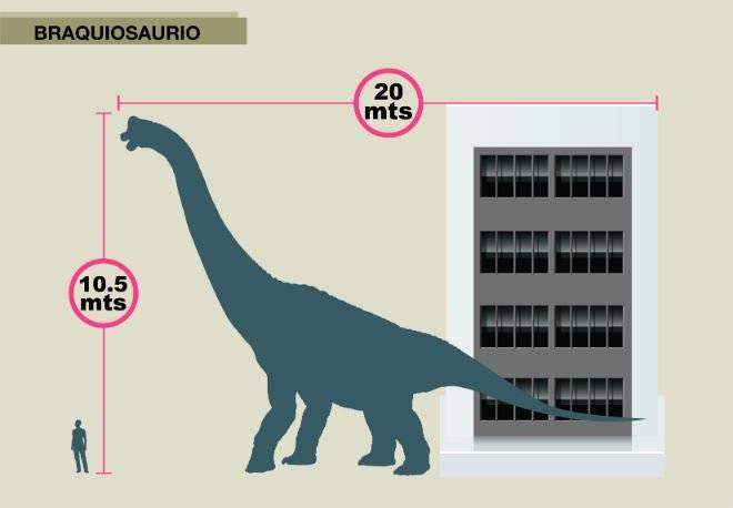 02braquiosaurio.jpg