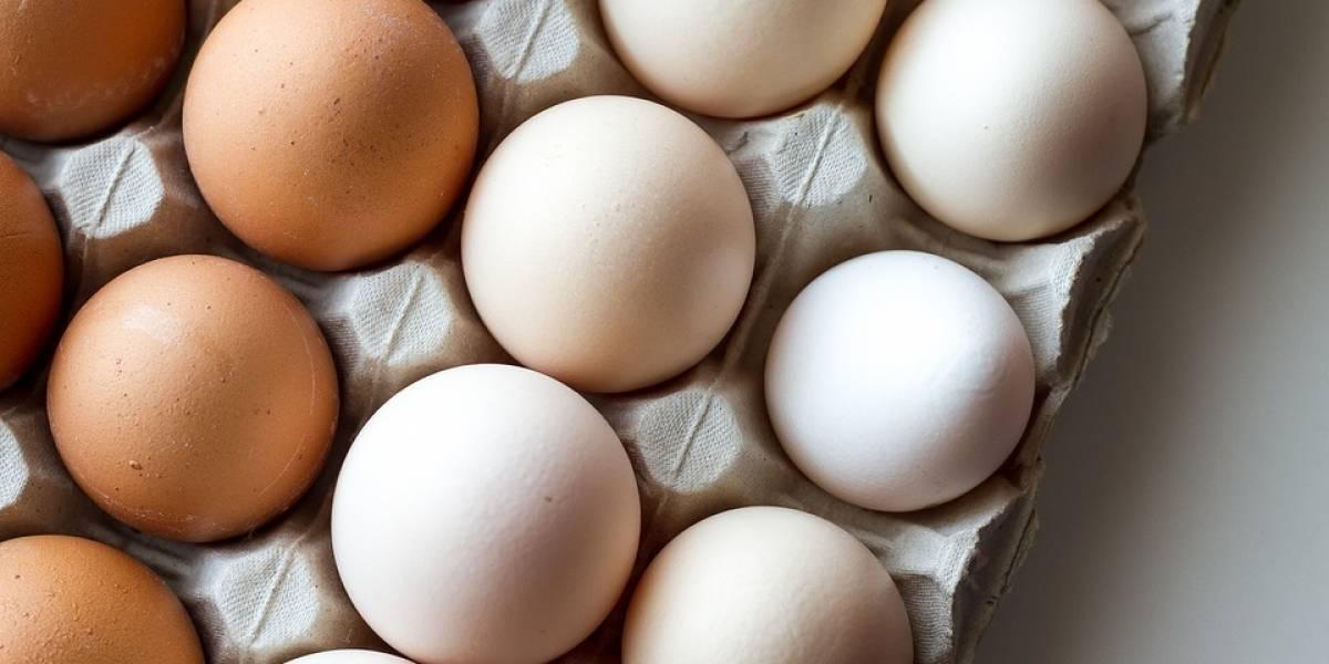 Piden mil 500 huevos para atletas olímpicos y les entregan 15 mil por error