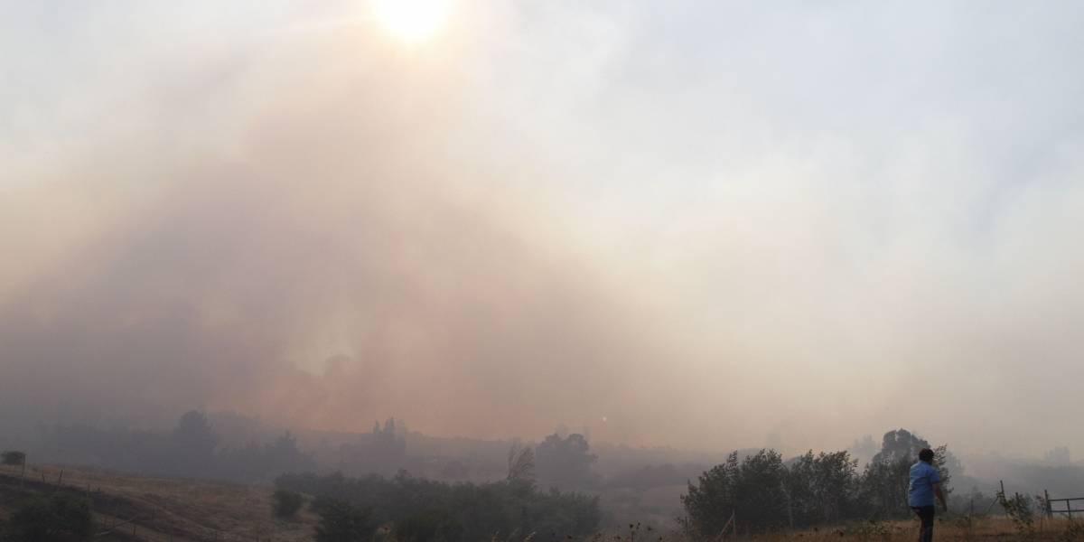 Onemi mantiene alerta roja para Limache y Villa Alemana por incendios forestales