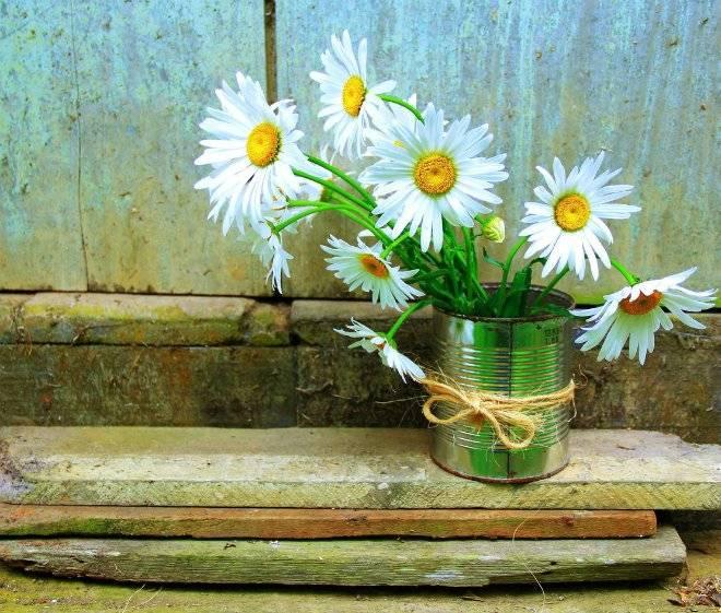 imghowtomakeaflowerpotfromwastematerial6diytutorials4864orig.jpg