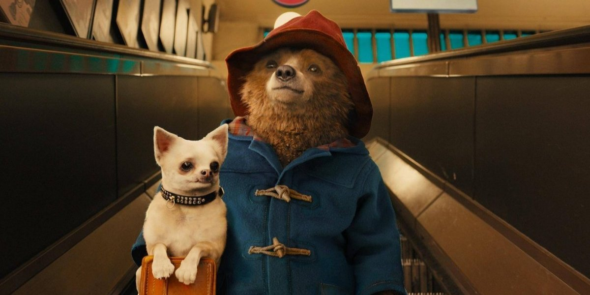 "Paul King: ""Paddington es un ejemplo de ternura y fortaleza"""
