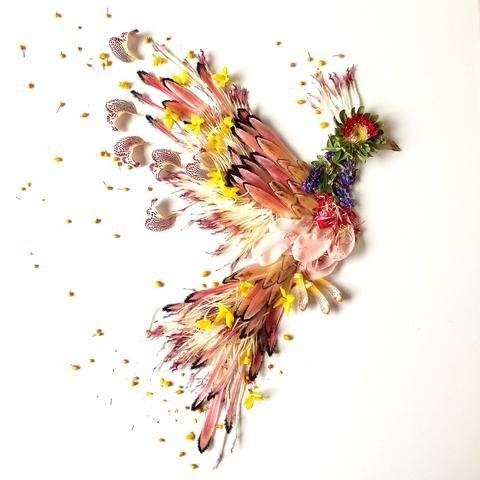 phoenixlarge.jpg