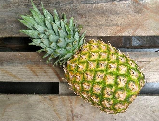 pineapple6427231280.jpg
