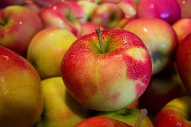 apples4904741920660x550.jpg