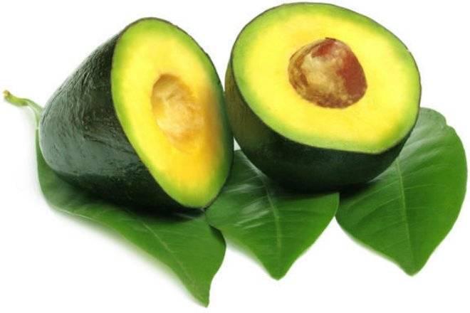avocadoallergy.jpg
