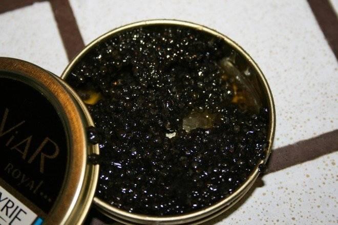 caviar2660x440.jpg