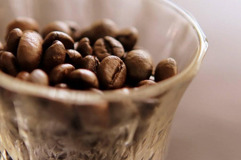 coffeeumershabibfli.jpg