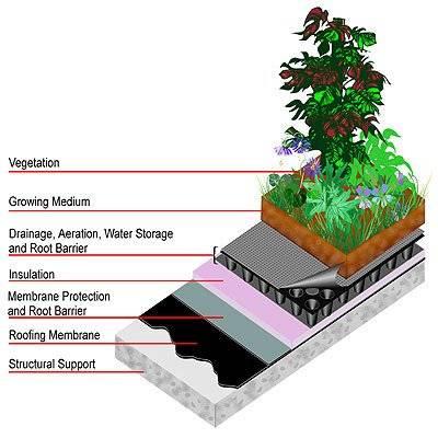 greenroofdiagram.jpg