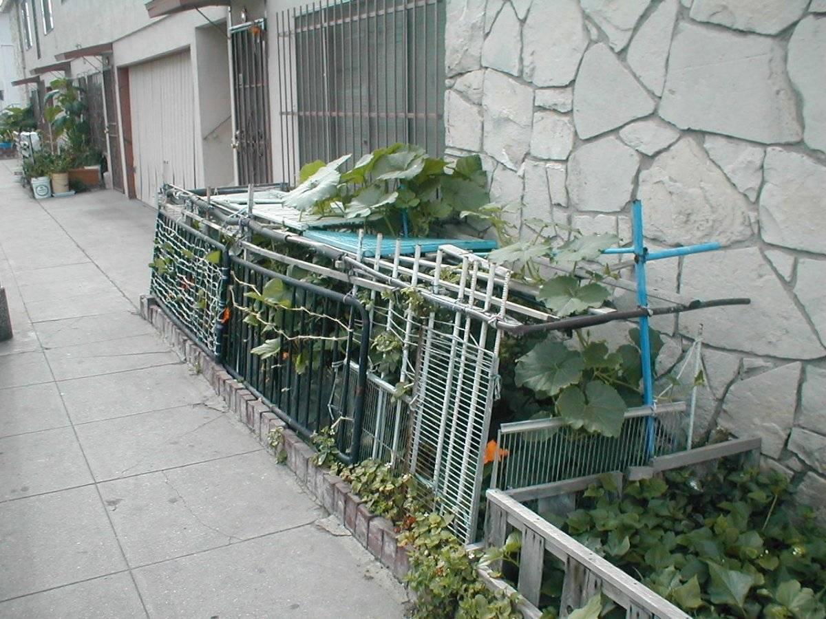 jardinesenlacalle.jpg