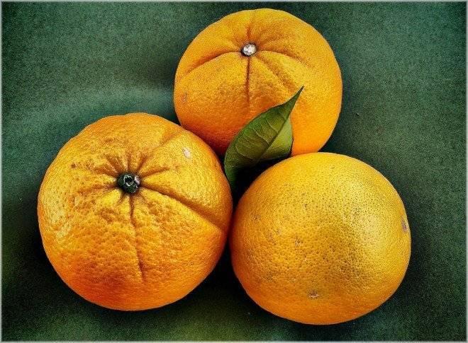 naranjas2660x485.jpg
