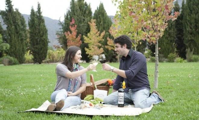 picnicvino660x550.jpg