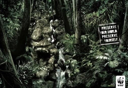 selva1507x350.jpg