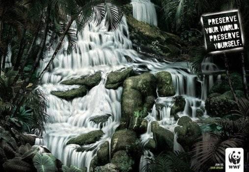 selva2507x350.jpg
