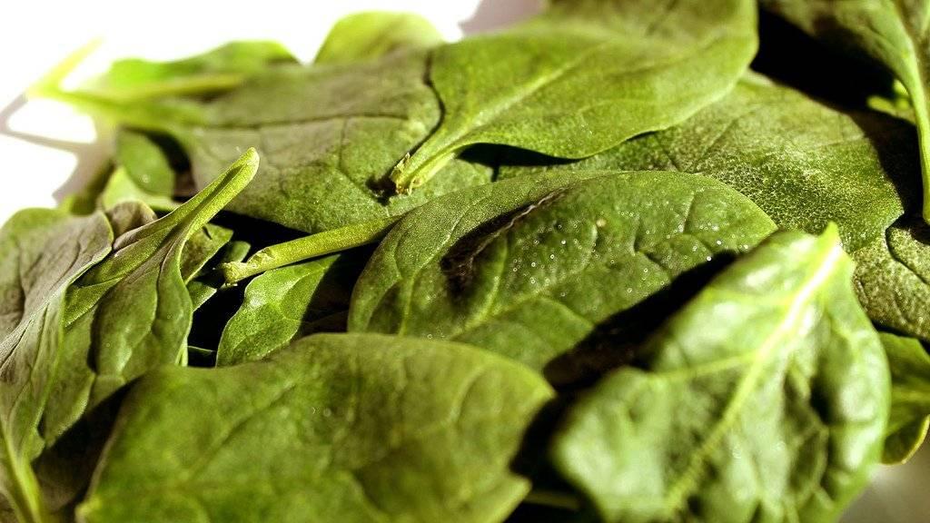 spinach-1.jpg