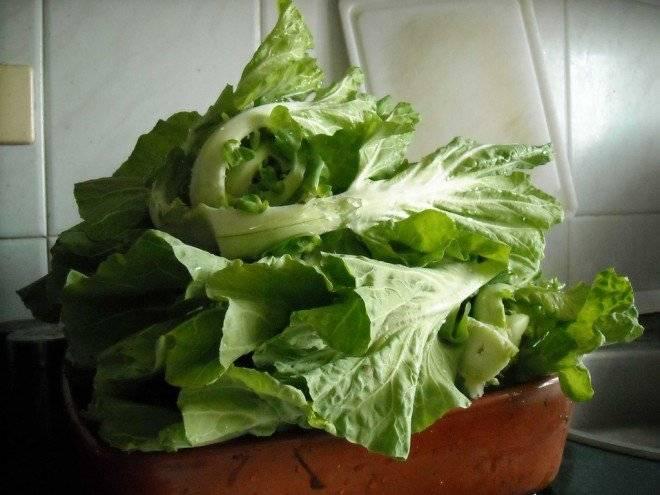 verduras2660x495.jpg