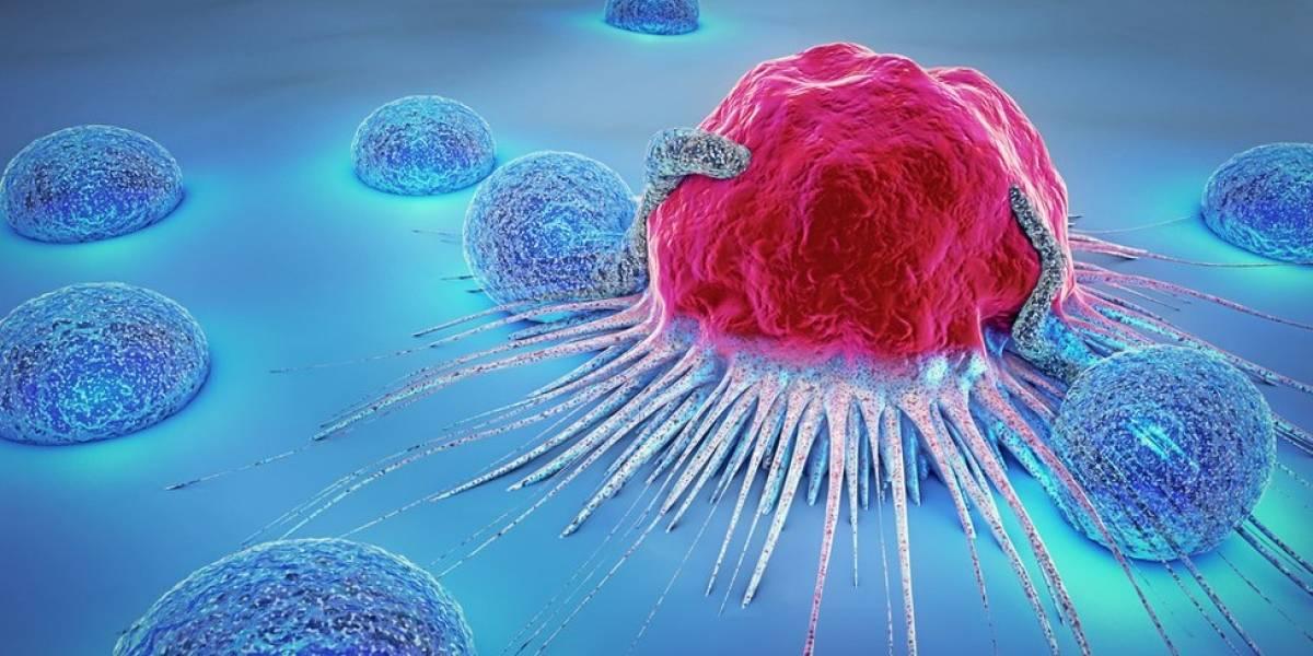 Vacina experimental contra câncer promete 'ensinar o corpo a destruir tumores'
