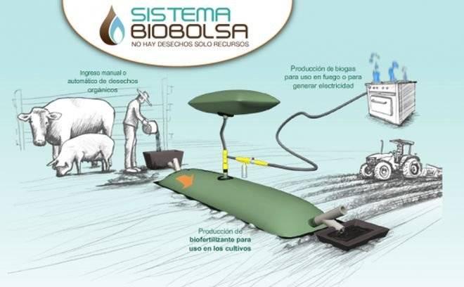biobolsa.jpg