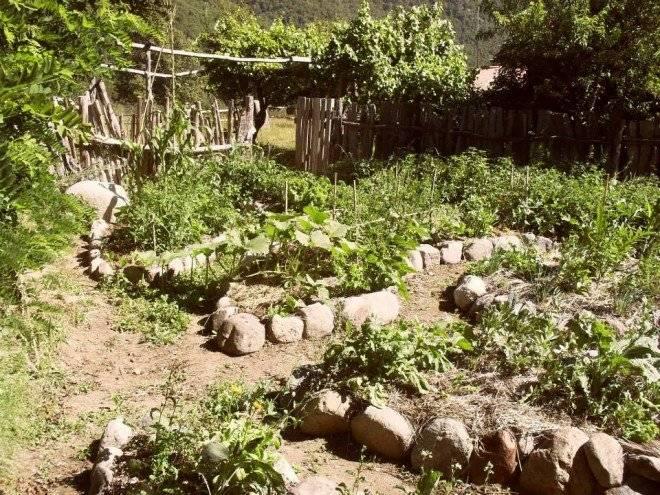 bosques2660x550.jpg