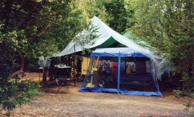 camping15.jpg