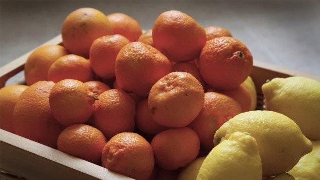 citricos660x550.jpg