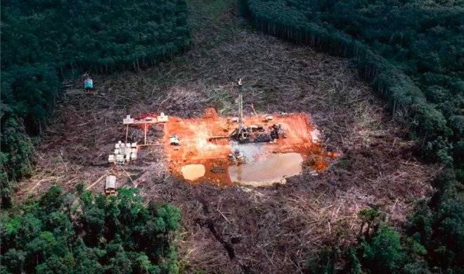 deforestacionafrica660x550.jpg