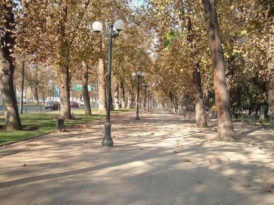 forestal3550x412.jpg
