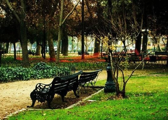 forestal4550x394.jpg