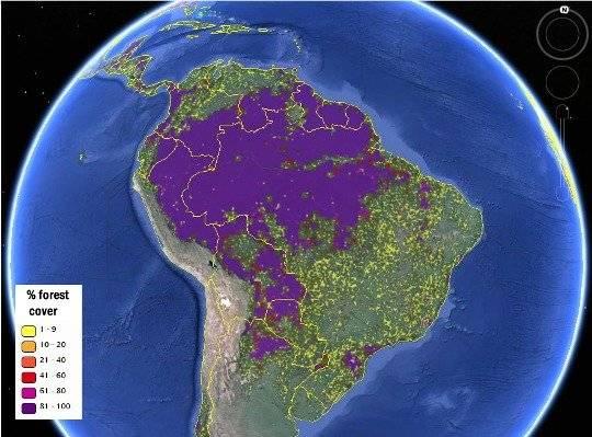 forestmap2.jpg