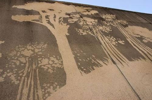 grafiti4.jpg
