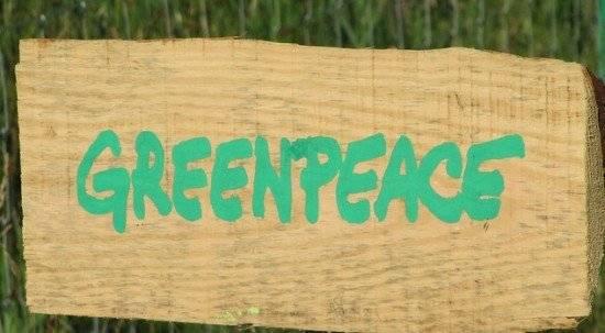 greenpeace550x303.jpg