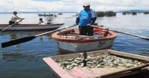 pescadores300x300.jpg