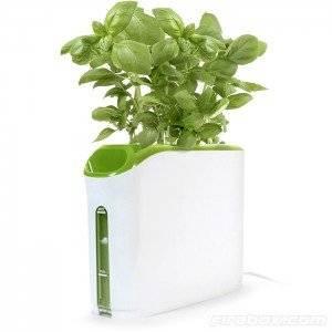 powerplantgrowingmachine300x300.jpg