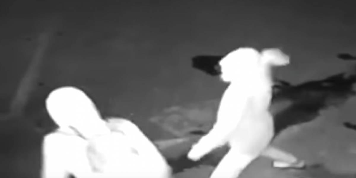 Video: Ladrón deja inconsciente a su compinche en pleno robo