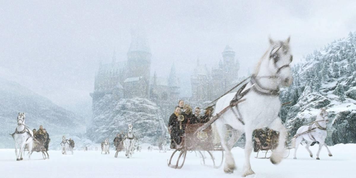 Harry Potter: homem esculpe réplica de cenário de Hogwarts na neve para filhas
