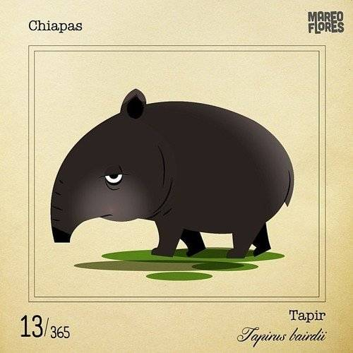 tapir660x550.jpg