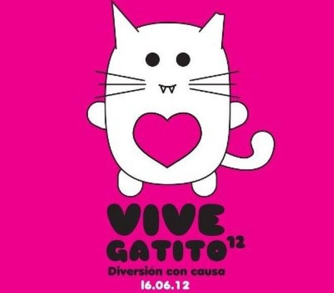 vivegatito20121.jpg