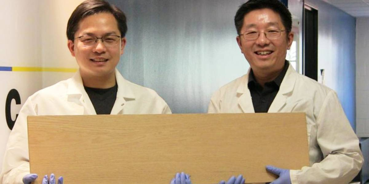 Cómo es la supermadera, el material tan resistente que puede usarse en lugar del acero