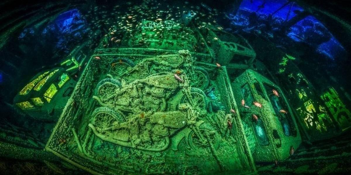 Las impactantes imágenes ganadoras del concurso Fotógrafo Submarino del Año 2018