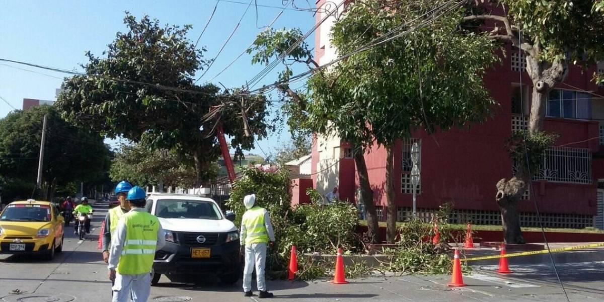 ¡Pilas! Qué no se lo lleve la fuerte brisa en Barranquilla