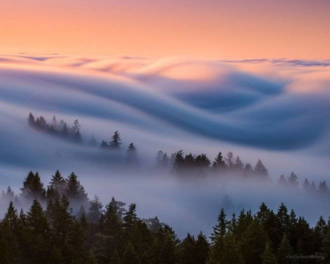 fogwaves583face1b93d5880660x550.jpg